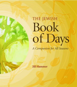 book of days cover