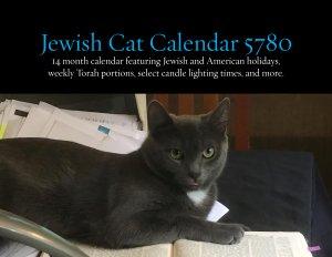 Jewish Cat Calendar 2020